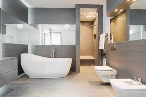 Toilet Clog Olympia