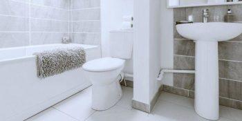 Clogged Toilets Puyallup