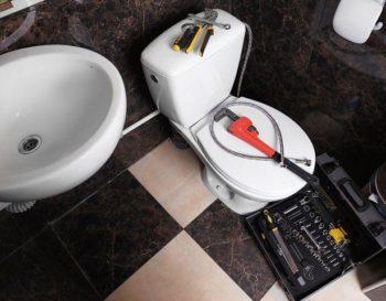 Puyallup Toilet Clog Plumber